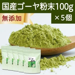 国産ゴーヤ粉末100g×5個 沖縄産 青汁 サプリメント 無添加 まるごと 丸ごと 100% ゴーヤー パウダー 苦瓜 にがうり ジュースに|hl-labo