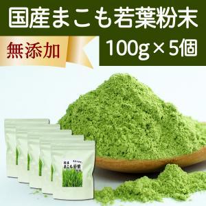 国産まこも若葉粉末100g×5個 真菰パウダー マクロビオティック 農薬不使用 マコモ 青汁 マコモダケ まこもたけ hl-labo