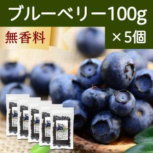ブルーベリー100g×5個 ドライフルーツ|hl-labo