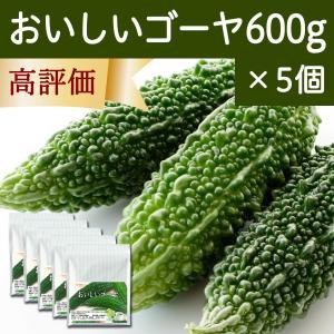 おいしいゴーヤ600g×5個 粉末 沖縄産使用 サプリメント 黒糖配合|hl-labo