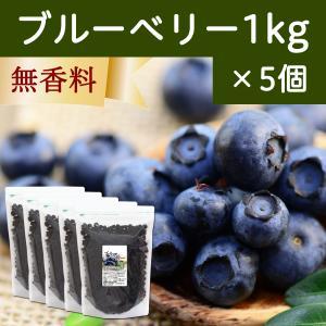 ブルーベリー1kg×5個 ドライフルーツ チャック付き袋|hl-labo
