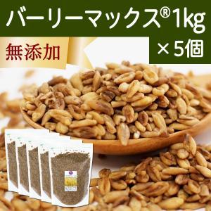 スーパー大麦 バーリーマックス1kg×5個  食物繊維|hl-labo