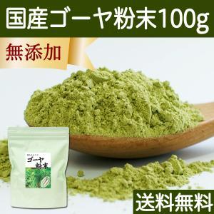 送料無料 国産ゴーヤ粉末100g 沖縄産 青汁 サプリメント 無添加 まるごと 丸ごと 100% ゴーヤー パウダー 苦瓜 にがうり ジュースに|hl-labo