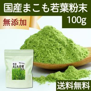 送料無料 国産まこも若葉粉末100g 真菰パウダー マクロビオティック 農薬不使用 マコモ 青汁 マコモダケ まこもたけ|hl-labo