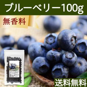 ブルーベリー100g ドライフルーツ 送料無料|hl-labo