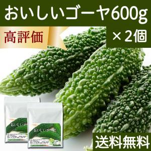 送料無料 おいしいゴーヤ600g×2個 粉末 沖縄産使用 サプリメント 黒糖配合|hl-labo