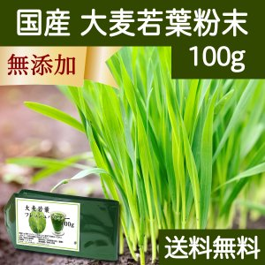 送料無料 国産・大麦若葉粉末100g 無添加 100% 青汁スムージーに 野菜不足の方に 無農薬|hl-labo
