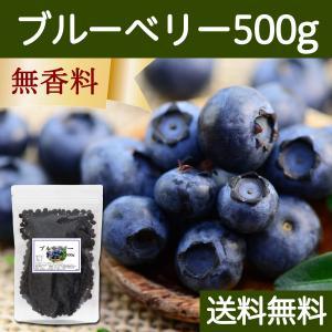 ブルーベリー500g ドライフルーツ チャック付き袋 送料無料|hl-labo