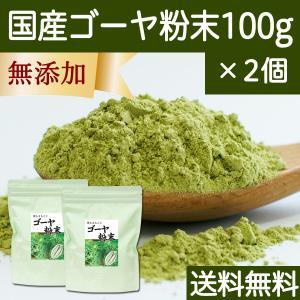 送料無料 国産ゴーヤ粉末100g×2個 沖縄産 青汁 サプリメント 無添加 まるごと 丸ごと 100% ゴーヤー パウダー 苦瓜 にがうり ジュースに|hl-labo