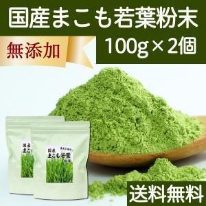 送料無料 国産まこも若葉粉末100g×2個 真菰パウダー マクロビオティック 農薬不使用 マコモ 青汁 マコモダケ まこもたけ hl-labo