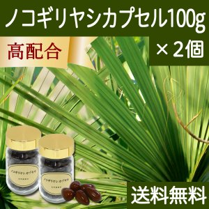 送料無料 ノコギリヤシカプセル・ビン100g×2個 ノコギリヤシ油、亜鉛酵母、パンプキンシードオイル配合 サプリメント|hl-labo