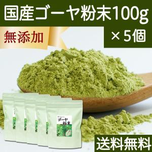 送料無料 国産ゴーヤ粉末100g×5個 沖縄産 青汁 サプリメント 無添加 まるごと 丸ごと 100% ゴーヤー パウダー 苦瓜 にがうり ジュースに|hl-labo
