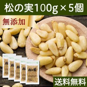 松の実 100g×5個 無添加 無塩 おすすめ 人気 ノンオイル 送料無料|hl-labo