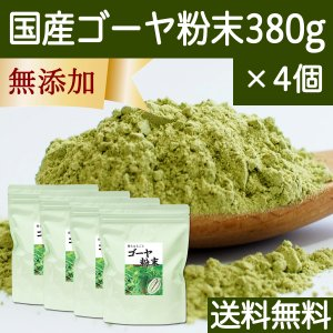 送料無料 国産ゴーヤ粉末 380g×4個 沖縄産 青汁 サプリメント 無添加 まるごと 丸ごと 100% ゴーヤー パウダー 苦瓜 にがうり ジュースに|hl-labo