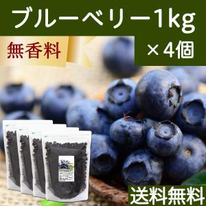 ブルーベリー1kg×4個 ドライフルーツ チャック付き袋 送料無料|hl-labo