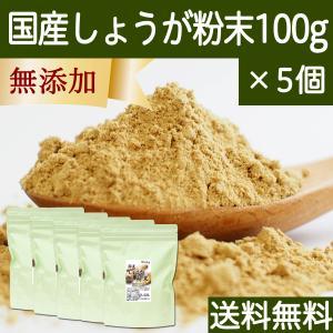 しょうが 粉末 100g×5個 生姜 パウダー ショウガ 粉末 国産 送料無料|hl-labo
