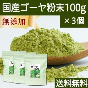 送料無料 国産ゴーヤ粉末100g×3個 沖縄産 青汁 サプリメント 無添加 まるごと 丸ごと 100% ゴーヤー パウダー 苦瓜 にがうり ジュースに|hl-labo