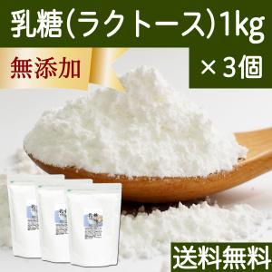 送料無料 乳糖1kg×3個 純白マイクロパウダー 舌にざらつかない微粒子粉末 ラクトース 製菓に 無添加 善玉菌 増やす サプリメント|hl-labo
