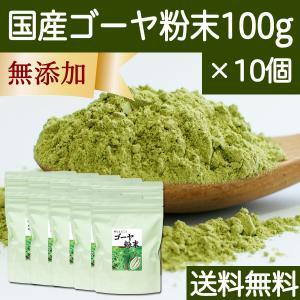 送料無料 国産ゴーヤ粉末100g×10個 沖縄産 青汁 サプリメント 無添加 まるごと 丸ごと 100% ゴーヤー パウダー 苦瓜 にがうり ジュースに|hl-labo