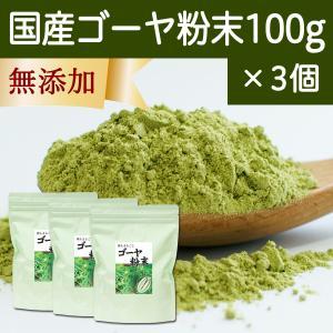 国産ゴーヤ粉末100g×3個 沖縄産 青汁 サプリメント 無添加 まるごと 丸ごと 100% ゴーヤー パウダー 苦瓜 にがうり ジュースに|hl-labo