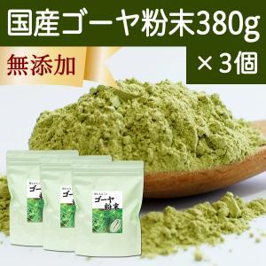 国産ゴーヤ粉末 380g×3個 沖縄産 青汁 サプリメント 無添加 まるごと 丸ごと 100% ゴーヤー パウダー 苦瓜 にがうり ジュースに|hl-labo