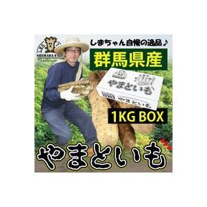 【限定クーポン】島田ファーム産 やまといも 1kg詰め BOX|hl1