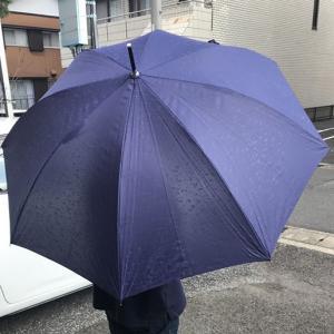 【限定クーポン】代引き不可 再帰反射イルミナイト 婦人用傘×6本セット hl1