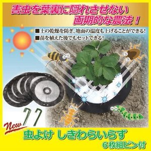 【限定クーポン】虫よけ しきわらいらず 6枚組ピン付(3個で送料無料、5個で1個オマケ!)|hl1