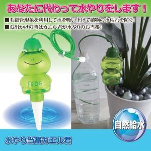【限定クーポン】水やり当番カエル君 3個セット|hl1