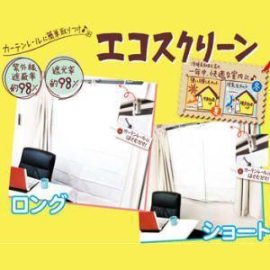 【限定クーポン】エコスクリーン ロングサイズ 2枚入 hl1