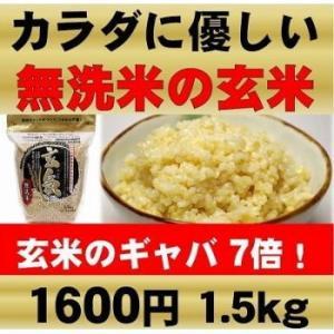 【限定クーポン】玄米 玄氣 1.5kg|hl1