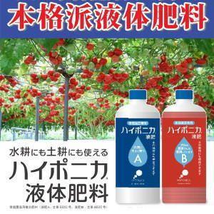 【ハイポニカ液体肥料 1L A液B液セット】水耕にも土耕にも使えるハイポニカ液体肥料!長年の研究によ...
