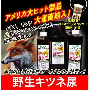 【アニマルピーNo.2(天然フォックス尿=天然キツネ狐尿)小ボトル(340mL)】鼬(イタチ=いたち)、貂テン、ネズミ/鼠/ねずみ等の害獣を駆除/退治/撃退/対策!|hm6|02