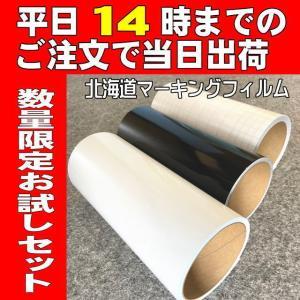シルエットカメオ用【お試しセット】カッティング用シート基本の白黒+転写シート|hmfshop