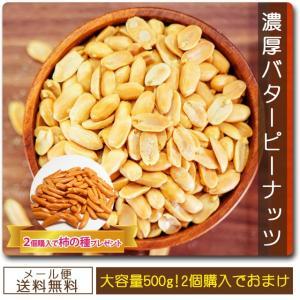 ピーナッツ 1000円ぽっきり 送料無料セール オープン記念 濃厚バターピーナッツ 500g お得用パック