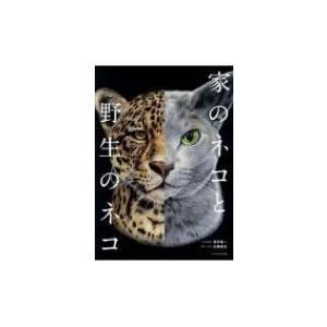 家のネコと野生のネコ / 澤井聖一  〔本〕