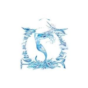 Nolwenn Leroy ノルウェンルロワ / O Tour De L'eau 輸入盤 〔CD〕