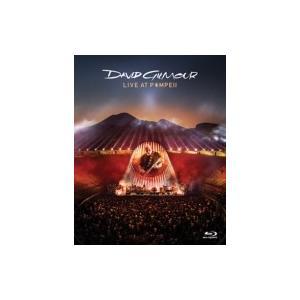 David Gilmour デビッドギルモア /...の商品画像