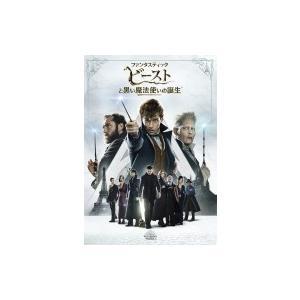 ファンタスティック・ビーストと黒い魔法使いの誕生  〔DVD〕|hmv