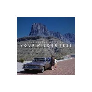 Pineapple Thief / Your Wilderness 輸入盤 〔CD〕