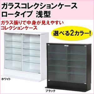 不二貿易 ガラスコレクションケース ロータイプ 浅型|hmy-select