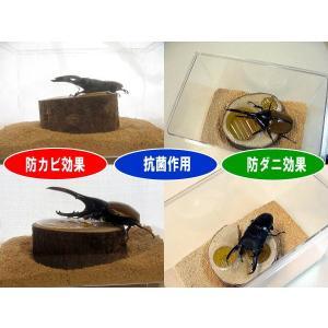 ひのきフレーク 抗菌・防カビ・防ダニ効果|hobby-club