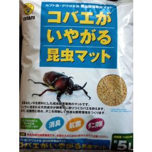 コバエがいやがる昆虫マット【抗菌・消臭・ダニ抑制】|hobby-club