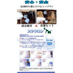 安心・安全 スタクロン500ml|hobby-club