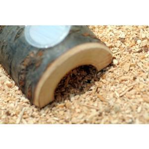 トンネル型 ゼリー装着穴1個 とまり木 【天然木使用】|hobby-club