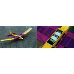 ムサシノ模型 パストラル 組立キット|hobby-road