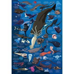 深海生物図鑑 水深1000m〜4000m (48-782)300ピース アポロ|hobby-zone-pz