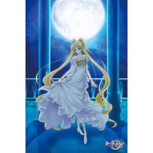 美少女戦士セーラームーンCrystal Princess Serenity(1000-535)エンスカイ 1000ピース|hobby-zone-pz