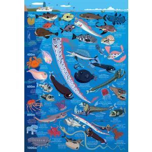 深海生物図鑑 水深200m〜1000m(48-...の関連商品2