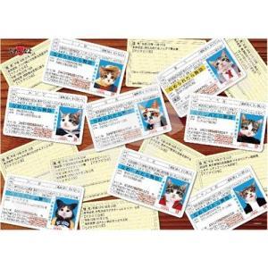 なめんなよ 免許証コレクション(500-328)500ピース エンスカイ【08月予約】|hobby-zone